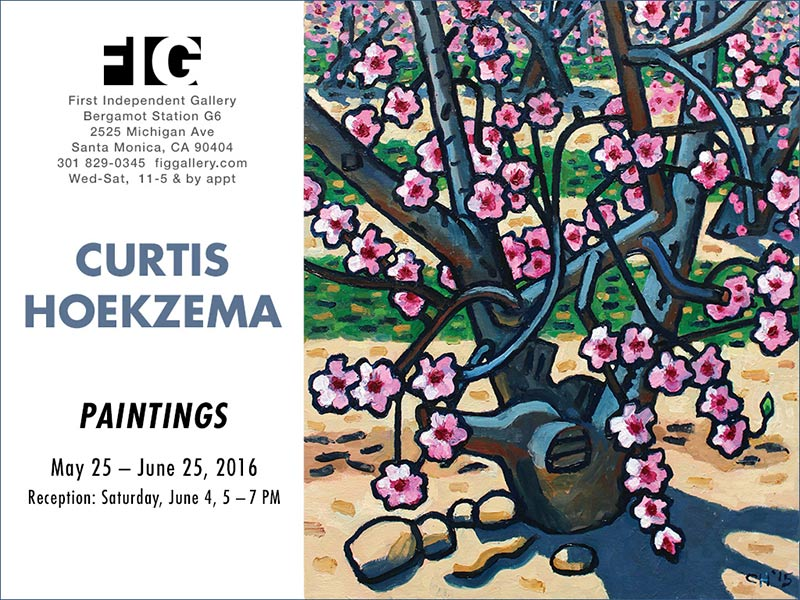 "CURTIS HOEKZEMA ""PAINTINGS"" 2016 FIG First Independent Gallery, Santa Monica."